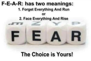 fear_2 meanings